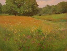 The Summer Field